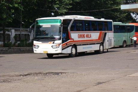 bis bus gunung mulia