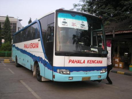 bis bus pahala kencana