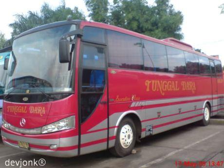 bis bus tunggal dara