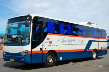 bis bus tunggal daya